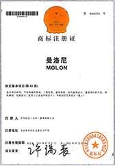 曼洛尼荣誉证书